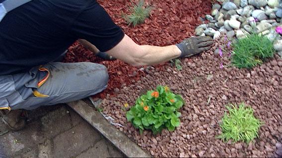 vorgarten gestalten rindenmulch – gartens max – motelindio, Gartenarbeit ideen